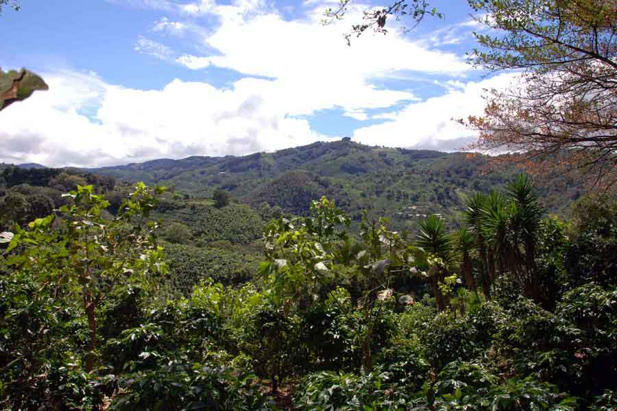 Landschaft in Costa Rica